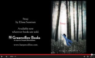 Book Trailer  Stray by Elissa Sussman   YouTube